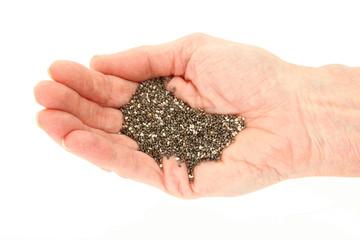 Organic Chia Seeds In Hand
