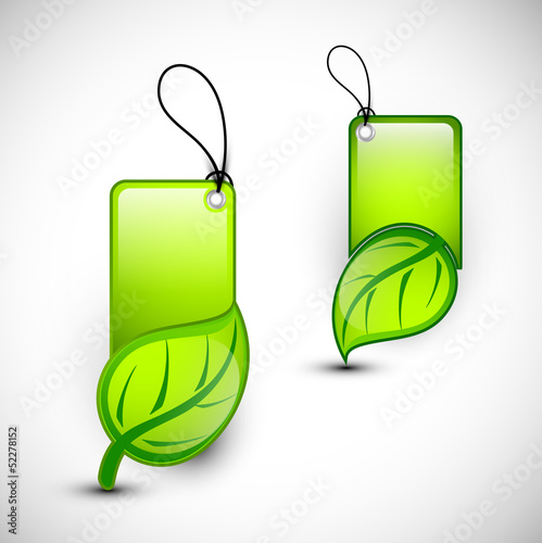 Blank Eco tags, stickers or labels, Nature concept.