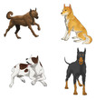 Sets of illustration dogs (vector)