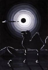 moon over camels in black night desert