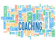 COACHING Tag Cloud (performance skills talent management)