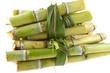 morceaux de tiges de cannes à sucre
