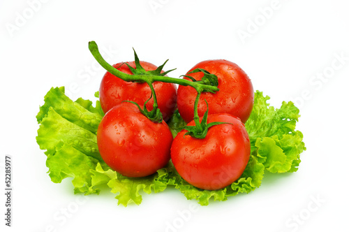 The red tomato and the green salad