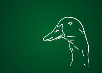 Animal de la ferme : Canard