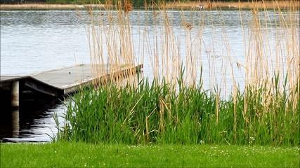 Boardwalk on lakesite