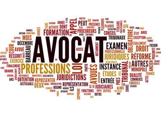 Avocat (tag cloud français)