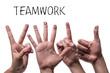 Teamwork