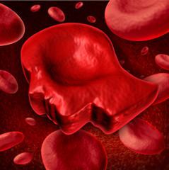 Human Blood