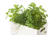 Box with herbs