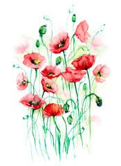 poppies vertical