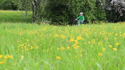Kind mit Bike in einem Weg durch eine Sommerwiese