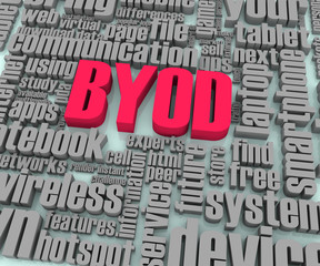 BYOD Words in Perspective