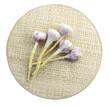 garlic on mat, clipping path included