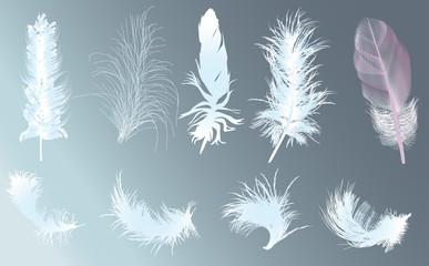 nine light feathers on blue background
