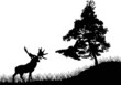 pine tree and deer silhouettes