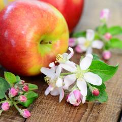 Äpfel mit Apfelblüten