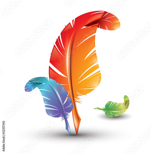 Three colourful artistic feathers