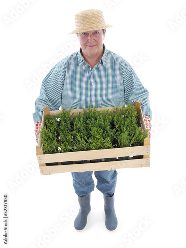 Senior gardener with box of aspic