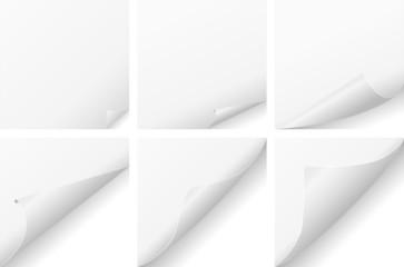 curled paper set