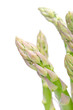 shoots of green asparagus on a white background