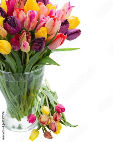 tulip flowers in glass vase