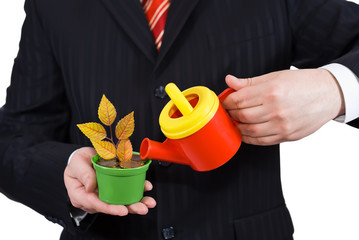 Businessman holding a flower pot and watering can on white