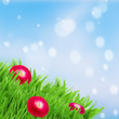 green grass lawn with red daisy flowers