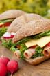 herzhaftes picknick - 52337519