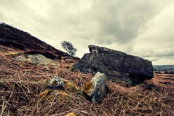 derbyshire rock