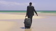 Businessman with suitcase walking on exotic beach