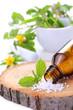 Alternative Medizin mit Globuli und Heilpflanzen