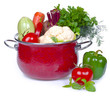 Composition of fresh vegetables in red pot