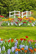 Flower garden with white bridge in spring. Keukenhof. Lisse. The