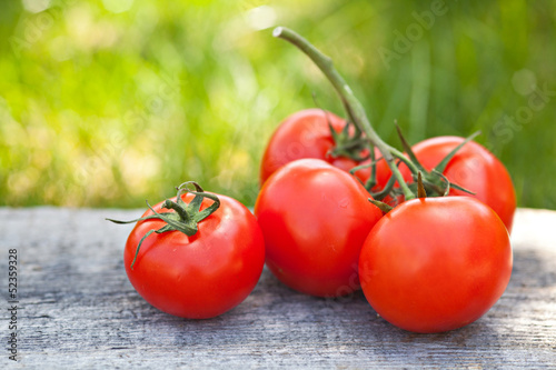 Fresh sweet tomatoes