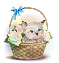 Illustration of  the fluffy kitten sitting in a basket with rose
