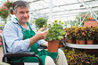 Man in a wheelchair holding a flower pot in a greenhouse