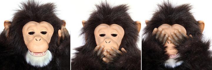 Gorilla Portraits present popular saying: See no evil...