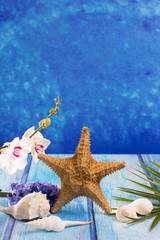 starfish seashells with hyacinth flower and white orchid