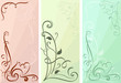 Color floral vertical banners vector set.