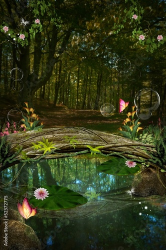 Enchanted nature series - Enchanted pond