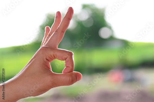 Segno ok con la mano