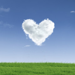 Heart shape cloud on field