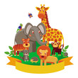 Vector cartoon animals - zoo