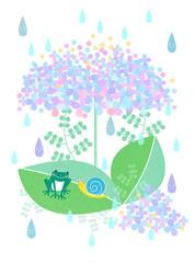 紫陽花の相合傘