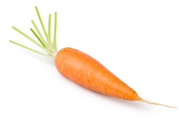 carrot one
