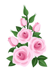 Branch of pink roses, buds and leaves. Vector illustration.