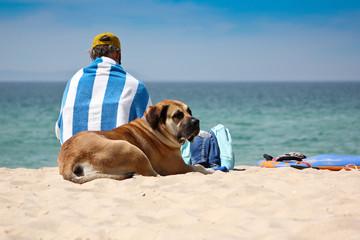 Mann und Hund am Strand mit Meerblick