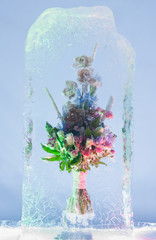 Bright bunch in icy composition