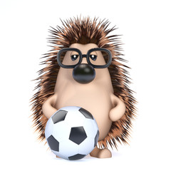 Cute hedgehog plays soccer