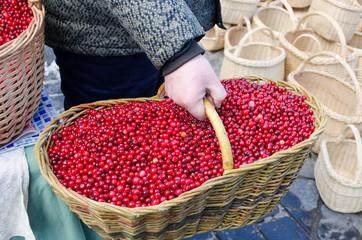 hand farmer wick basket mossberry market ecologic